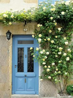 Ideas For Blue Front Door Colors French Country