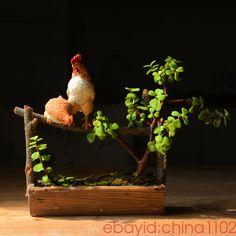 Creative Resin Hens Hydroponics cart Cacti Succulent Plant Pot Flower Planter #Unbranded