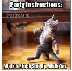 Party instructions