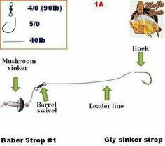 Carp Fishing Tips, Fly Fishing, Bass, Chart, Fly Tying, Lowes, Camping Tips, Double Bass