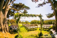 San Diego Wedding Photographers and Videographers, the ultimate blend of Classic, Timeless, and Fun imagery San Diego Wedding Venues, San Diego Wedding Photographer, Birch Aquarium, Johnson House, Martin Johnson, Cypress Trees, Family Events, Photography And Videography, Virginia