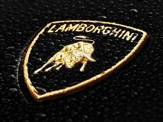 The shape of the Lamborghini logo depicts a shield and demonstrates golden snorting bull. The bull represents Lamborghini sports cars' power, speed, and prestige. Lamborghini Logo, Volkswagen Group, Car Logos, Super Cars, Bmw, Google, Anime, Shirts, Free
