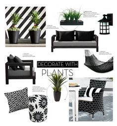 """""""Decorate with plants"""" by teebeekay on Polyvore featuring interior, interiors, interior design, home, home decor, interior decorating, West Elm, Vintage, XVL and Grandin Road"""