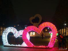 """일산호수공원 빛축제 아시나요? """"호수겨울꽃빛축제"""" : 네이버 블로그"""