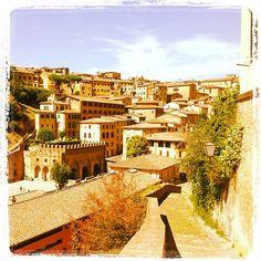 Siena - Costone