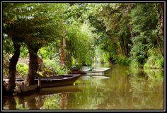 Les marais Poitevin