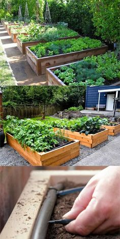 Detailed guide on how to build raised bed gardens! Lots of tips and ideas on best designs, soil, and materials for productive & beautiful DIY raised beds! A Piece of Rainbow backyard garden layout All About DIY Raised Bed Gardens – Part 1 Raised Garden Bed Plans, Building Raised Garden Beds, Raised Bed Garden Layout, Raised Bed Gardens, Raised Bed Diy, Wood For Raised Beds, Garden Box Plans, Backyard Vegetable Gardens, Vegetable Garden Design