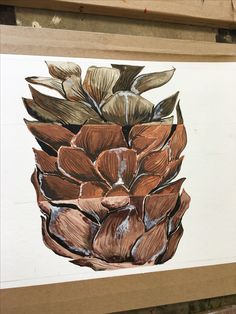 Pine Cone Split into 3 different mediums
