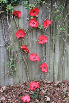 Beton, Keramik und mehr Coffee filter poppies for Remembrance Day How To Choose A Curio Cabinet Curi Recycled Garden Art, Garden Crafts, Garden Projects, Remembrance Day Activities, Remembrance Day Poppy, Diy Flowers, Paper Flowers, Flower Crafts, Poppy Craft For Kids