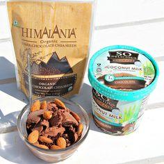 Chocolate Coconut Milk Ice Cream Dessert! – Simply Taralynn