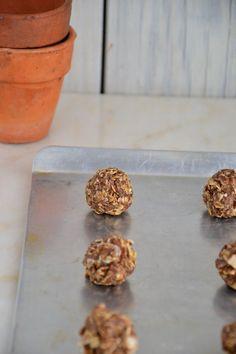 Raw Gingerbread Beauty Cookie Balls {Gluten-Free, Dairy-Free, Soy-Free, Vegan}