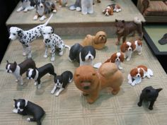 Miniature enthusiasts of Toronto Show Cats and dogs by Karl Blindheim  www.bykarl.com