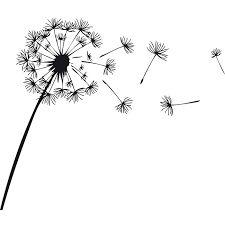 Disegno Nero Su Bianco.Risultati Immagini Per Soffione Bianco E Nero Pareti Con