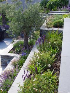 Terraced Landscaping, Outdoor Landscaping, Modern Landscaping, Terraced Backyard, Outdoor Decor, Backyard Garden Design, Garden Landscape Design, Cottage Garden Design, Circular Garden Design