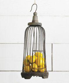 wire birdcag