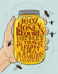 Honeybees by Heather Diane Hardison - Ever wondered how much work goes into your honey?
