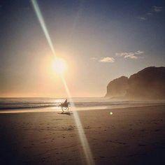 Bethells Beach, New Zealand. <3