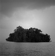 Ilha do Marinheiro, rio Mojuim, São Caetano de Odivelas, PA, 2011 by Edu Simões