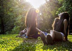 sun prado grass