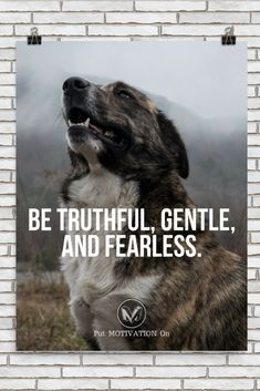 BE TRUTHFUL, GENTLE, AND FEARLESS | Poster – PutMotivationOn Follow all our motivational and inspirational quotes. Follow the link to Get our Motivational and Inspirational Apparel and Home Décor. #quote #quotes #qotd #quoteoftheday #motivation #inspiredaily #inspiration #entrepreneurship #goals #dreams #hustle #grind #successquotes #businessquotes #lifestyle #success #fitness #businessman #businessWoman #Inspirational