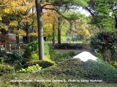 Japanese garden, Fabyan villa, Geneva IL