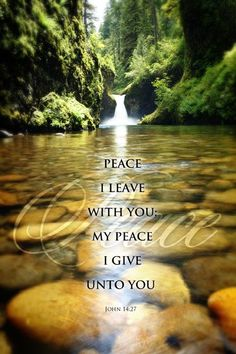 "•""Peace I leave with you, my peace I give unto you: not as the world giveth, give I unto you. Let not your heart be troubled, neither let it be afraid"" (John 14:27)"