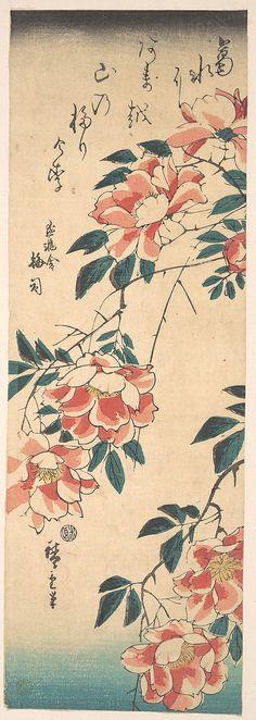 Roses  Utagawa Hiroshige  (Japanese, 1797–1858) Japanese Artwork, Japanese Painting, Japanese Prints, Japanese Illustration, Illustration Art, Motif Art Deco, Art Asiatique, Motif Floral, Art For Art Sake