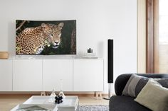 LG 55EA980W Curved OLED TV.