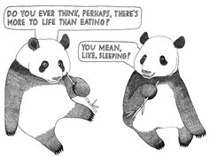 I think I'm a panda trapped in a human body :)