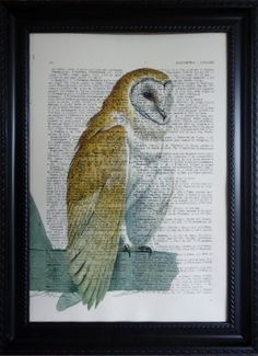 OWL ART Print on an Vintage  DICTIONARY Page Dictionary Print Owl Art Owl Mixed Media for your wall (296). $8.95, via Etsy.