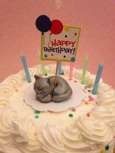 handmade cute kids birthday cake caketopper cake topper kitty cat decoration ornament polymer clay cats miniature animals desk pets  by KatzenKlaa on Etsy https://www.etsy.com/listing/217064468/handmade-cute-kids-birthday-cake