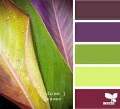сочетание фиолетового и зеленого - Поиск в Google