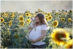 photoshoot in sunflowers