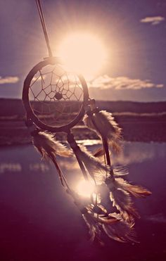Dreamcatchers. Used to protect people from nightmares. Bad dreams get caught in the web, disappearing with the light of day.