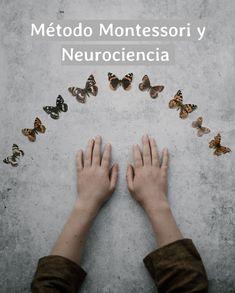 Montessori, Homeschool, Read And Write, Neuroscience, Sons, Homeschooling