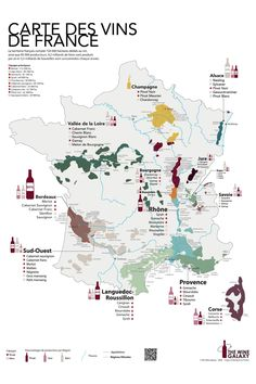 Wine Poster, Poster On, Poster Wall, Vin France, French Wine Regions, Wine List, Pinot Noir, Techno, Carne