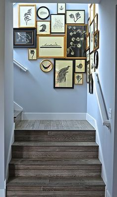 Staircase art. Reminds me of The Royal Tenenbaums!