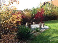 wünsche allen einen tollen TU ES DAY :-) Plants, Flora, Planters