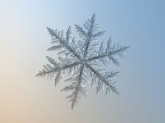 This image makes my soul happy. I think I can weather a snow storm now  (Alexy Kijatov photo of snowflake)