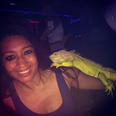 A green iguana finds a resting spot on Sakshi's arm. #GrabYourDream #TravelAdventurer #travel #adventure #wildlife