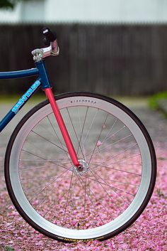 Reason I like this is the colours and the metal on the rim. It takes that hipster fixie thing and puts a more optimistic spin on it, as opposed to being about sailor tatts
