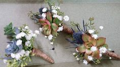 Succulent and Babies Breath Boutonniere's