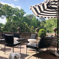 """Melanie Turner on Instagram: """"Summer is not over for me yet! #patio #sunshine #italianstyle #humpday #veranda #backandwhite #classic #outdoordesign #outdoorfurniture…"""" Outdoor Decor, Outdoor Furniture Sets, Patio, Italian Style, Instagram, Classic, Home Decor, Derby, Decoration Home"""