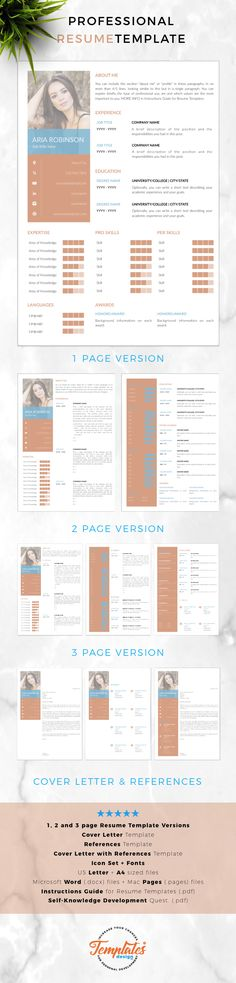 Modern Resume templates Professional Resumes for Ms Word  Pages
