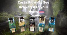 Britt Coffee - The Howler Magazine Living In Costa Rica, Costa Rica Travel, Keeping Healthy, Best Coffee, Central America, Health And Wellness, Magazine, Adventure, Pura Vida