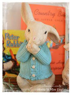 Peter Rabbit ♥