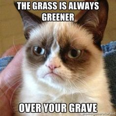 The grass is always greener over your grave