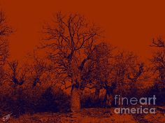 Forest in red. Do you love red colour? Red Colour, Fine Art, Sunset, Wall Art, Digital, Outdoor, Outdoors, Sunsets, Outdoor Games