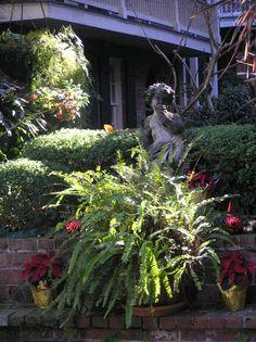 New Orleans - courtyard - 24 Dec 2013