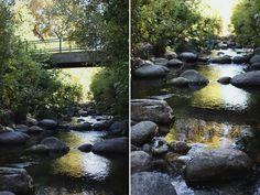 Lithia Park, Ashland, OR - by @Susan Yee